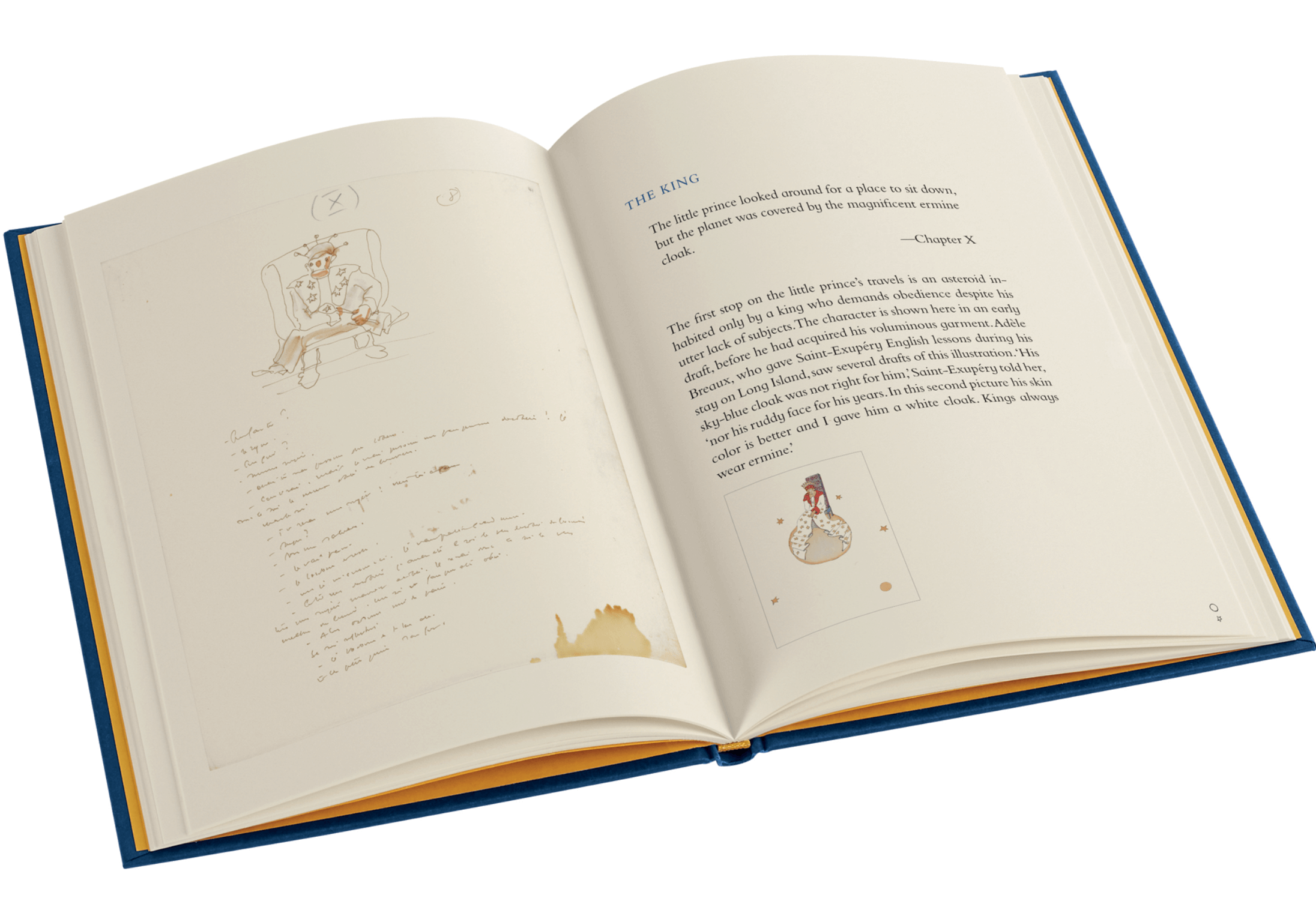 FS the little prince companion int