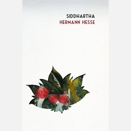 cased-Siddhartha-cover
