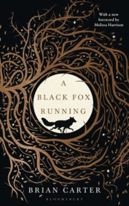 black fox running
