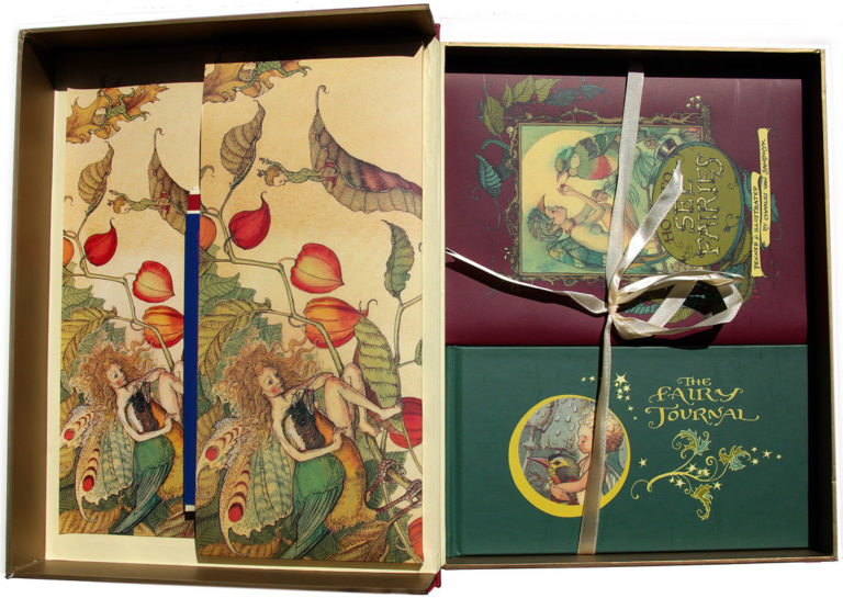 1999 CVS How to see fairies boxset open