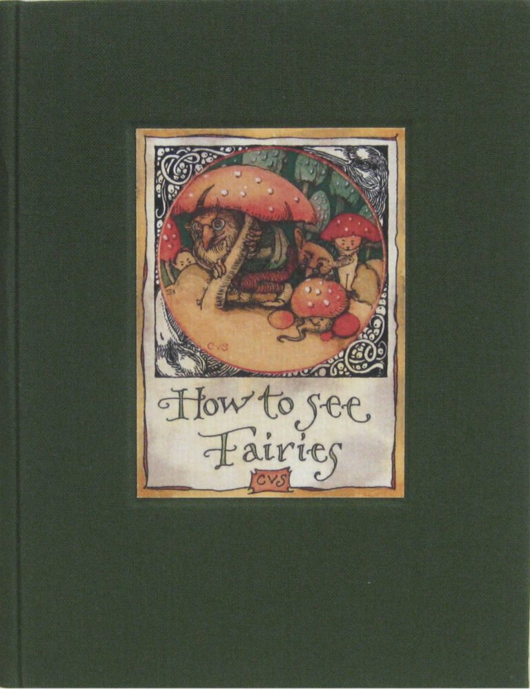 2006 CVS How to See Fairies Limited Edition cover