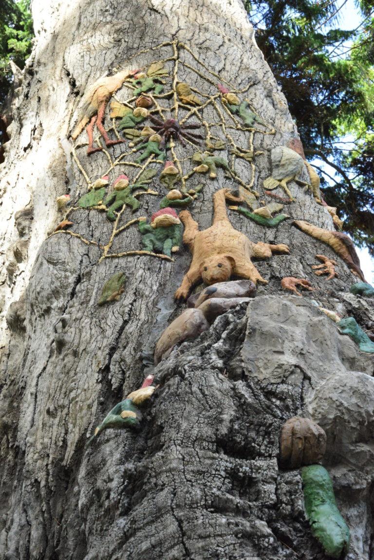 ola cohn fairies tree sorcerer spider