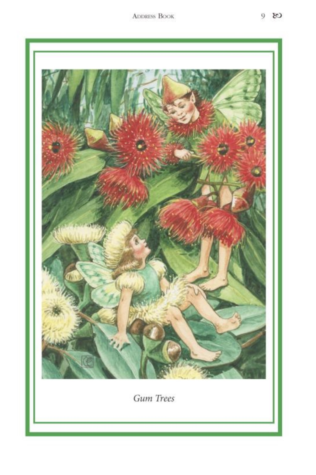 Elizabeth Alger Margaret Thornton Australian Flower Fairies Address Book Gum Tree Fairy