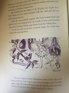 Pixie OHarris Fairy Book Contents Wattle Fairy line sm