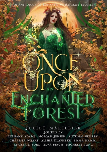 once upon an enchanted forest