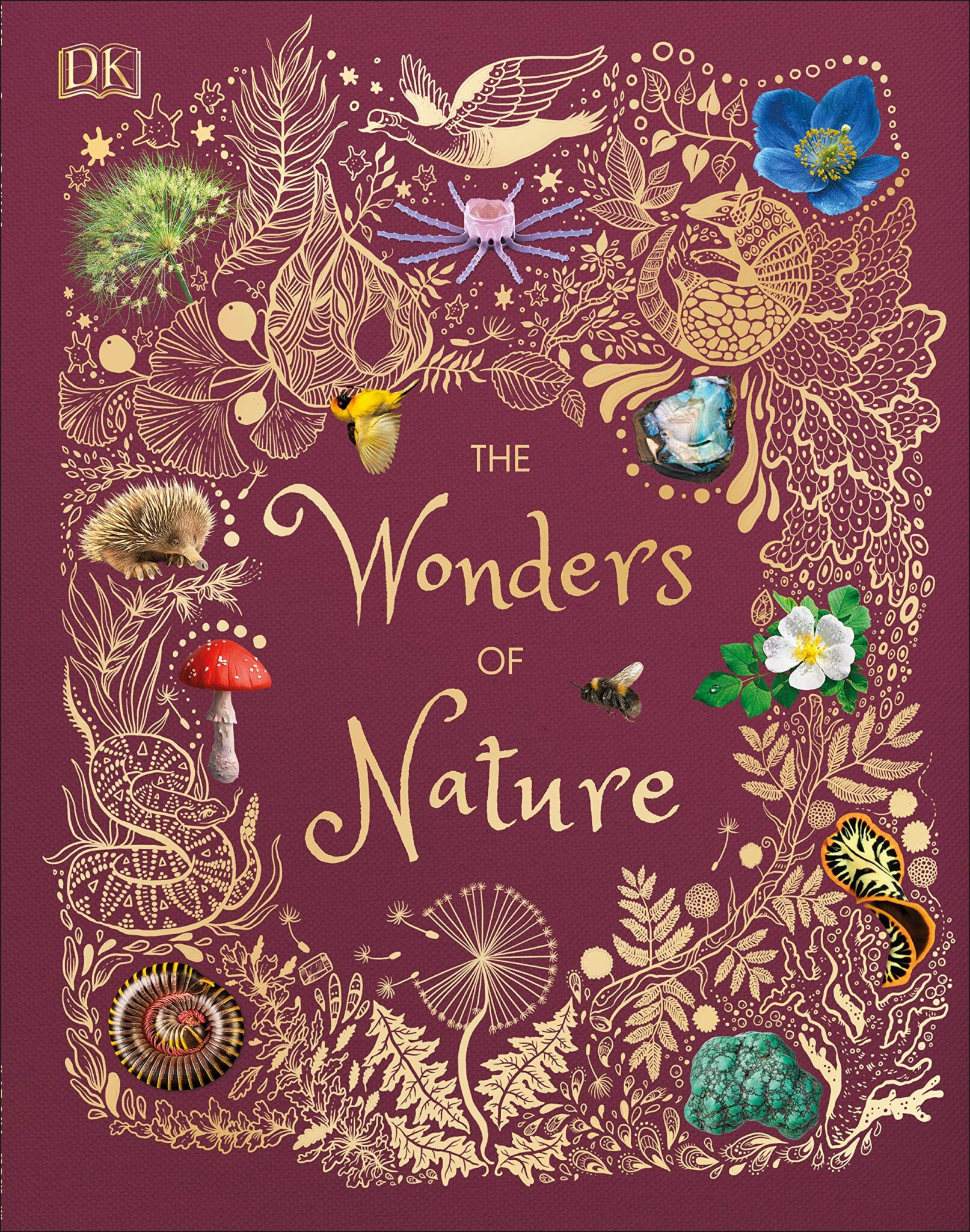 wonders of nature hoare cover