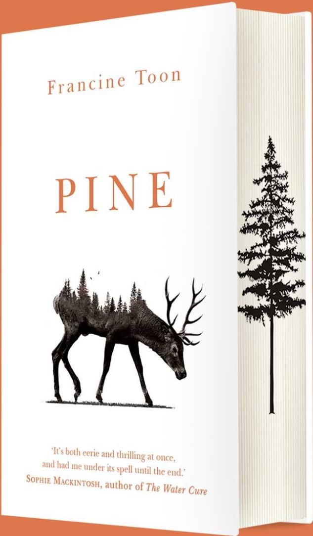 Francine Toon Pine Sprayed