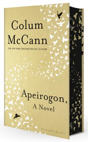 apeirogon colum mccann