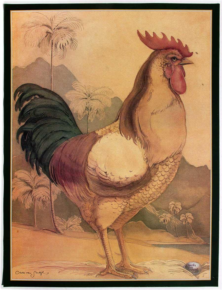 Rooster (Charles van Sandwyk, 1992)