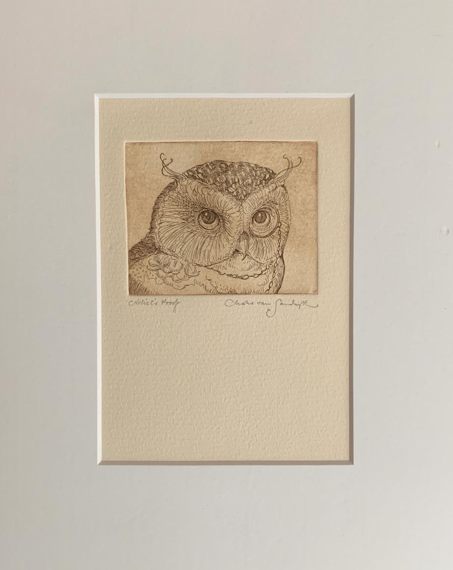 Owl etching from 'Full Moon Eyes' (Charles van Sandwyk, 2012)