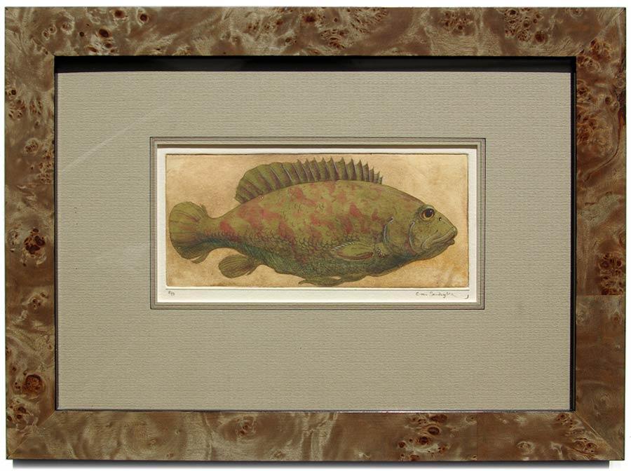 Fish, framed painted etching (Charles van Sandwyk, 2012)